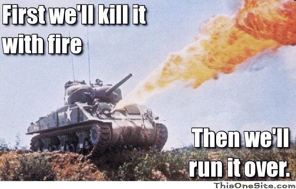 [Image: frabz-First-well-kill-it-with-fire-Then-...d36b7c.jpg]