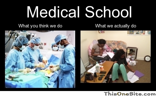 Funny Med School Meme : Medical school this one site